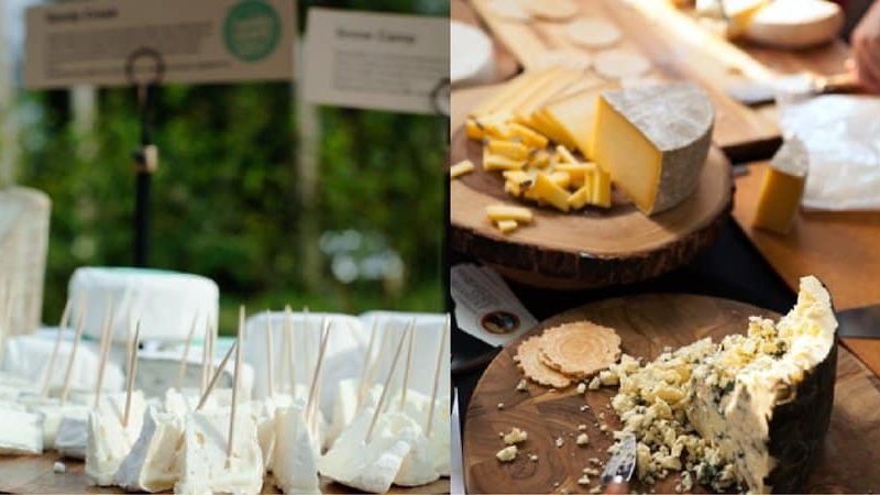 Things to Do Cincy: The Cheese Fest