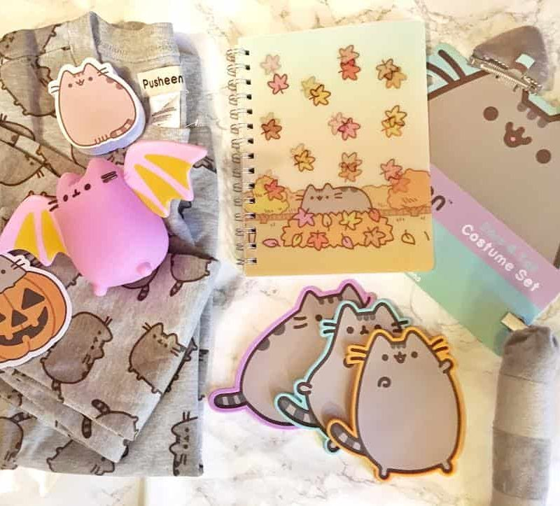Pusheen Box Unboxing: Fall Edition