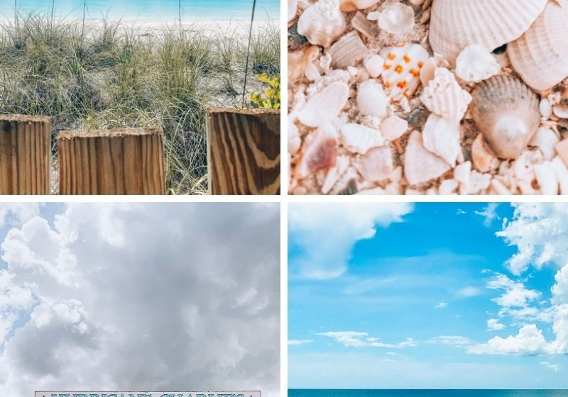 20+ Fun Things to Do in Fort Myers